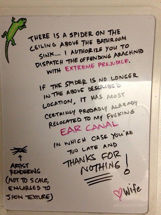 funny-spider-ceiling-wife-note
